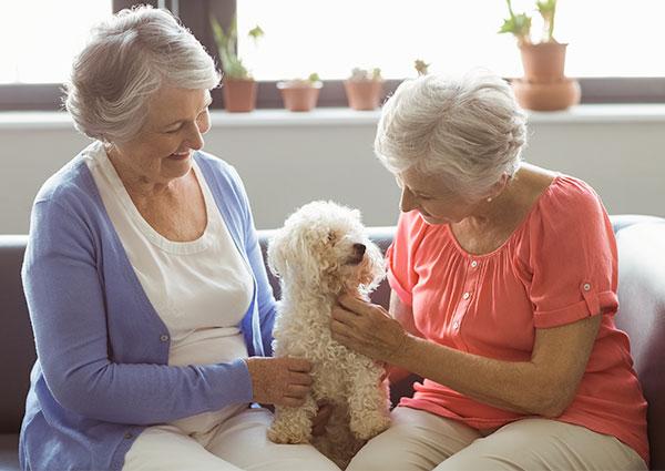 安老院提供更好的養老模式